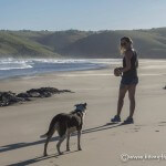coffee bay south africa