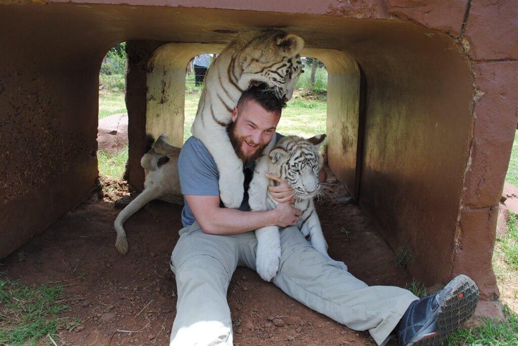Callum, and tigers