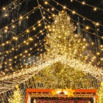 best german christmas markets