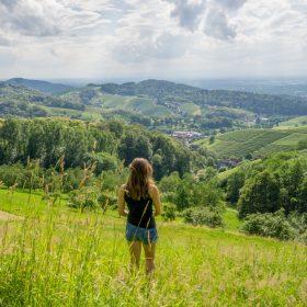 salsbachwalden
