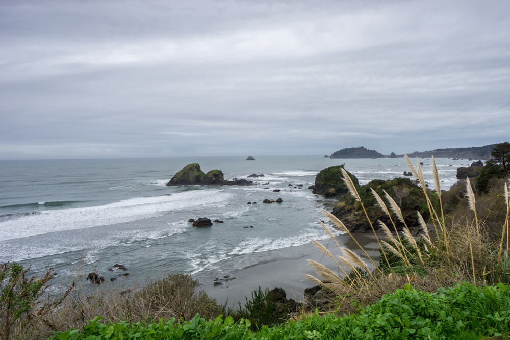 things to do in humboldt california