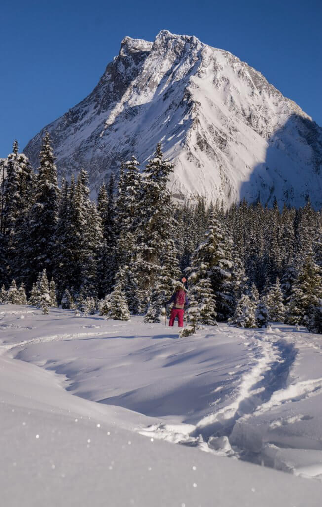 Photos of Alberta in the winter