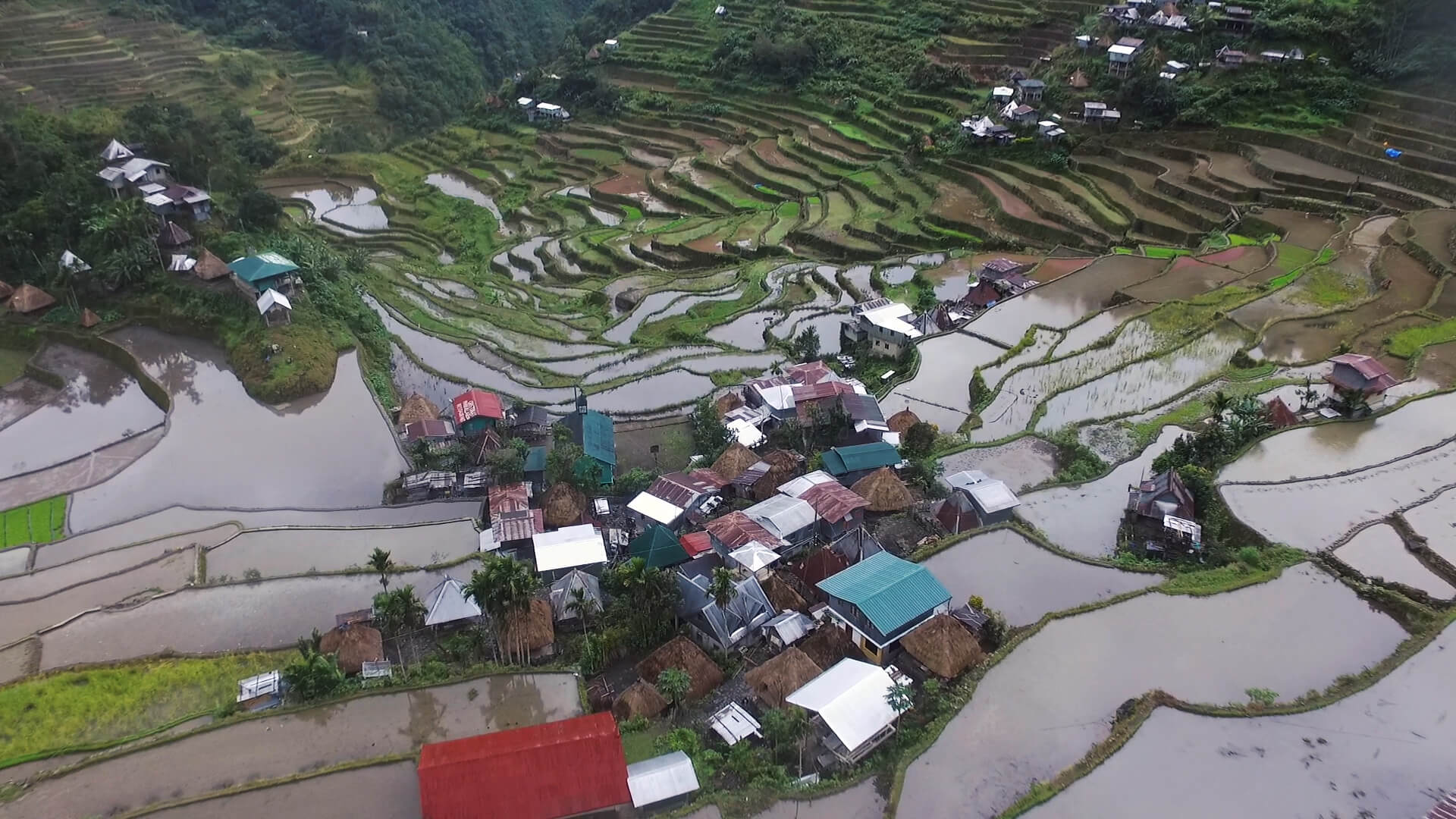 Birds eye batad rice terraces