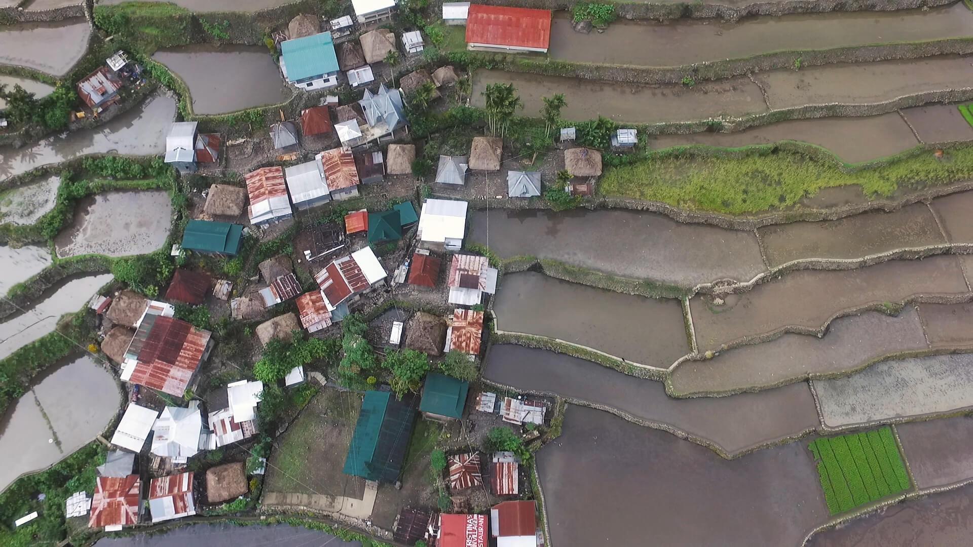 Batad rice fields banaue rice terraces