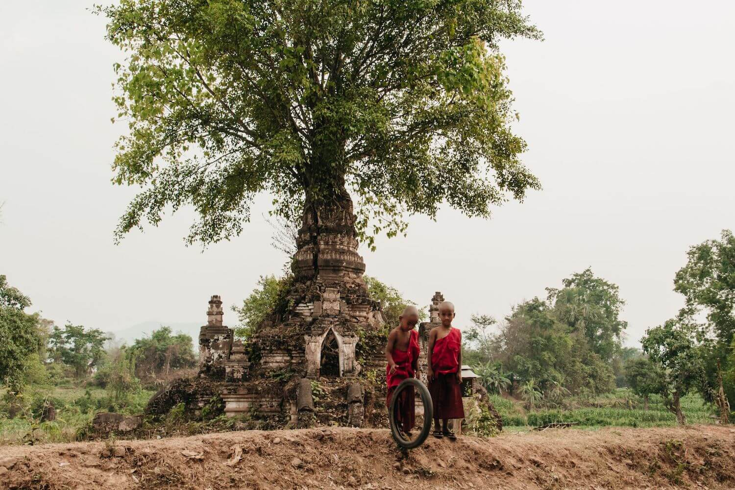 Best Myanmar Itinerary: Photo of two monk boys in red robes playing outside of a temple that has a tree sprouting from the top in Hsipaw, Myanmar. Photo taken by Ryan Brown of Lost Boy Memoirs, edited in Lightroom.