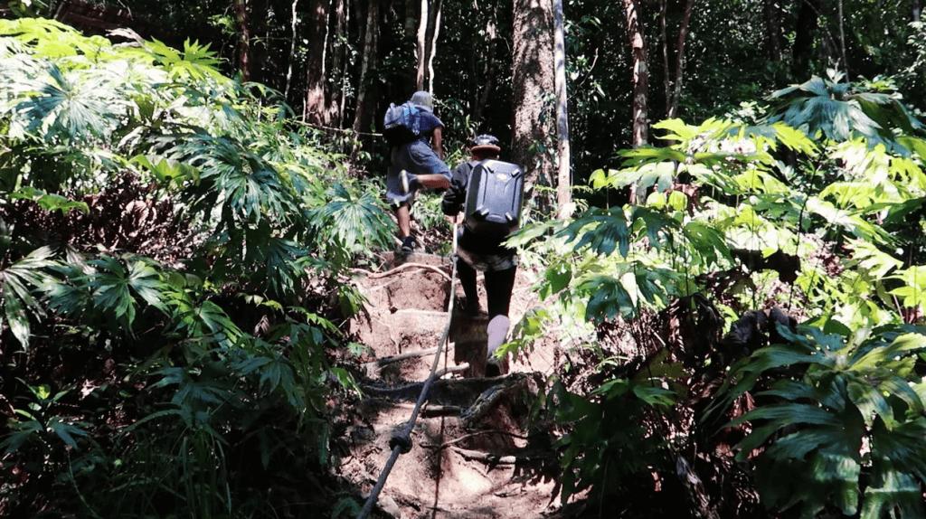 Hike to Chemerung Falls
