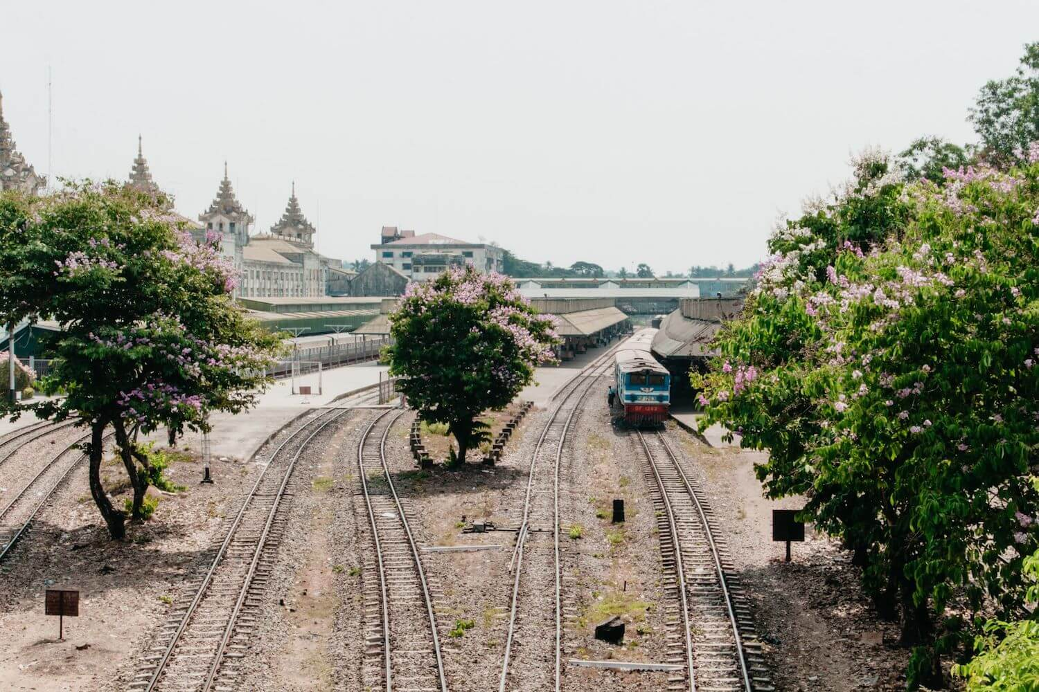 Best Myanmar Itinerary: Photo of Yangon train station, once capital of Burma, showing trees in bloom and old colonial buildings. Photo taken by Ryan Brown of Lost Boy Memoirs with Canon 650D Rebel T4i, edited in Adobe Lightroom.