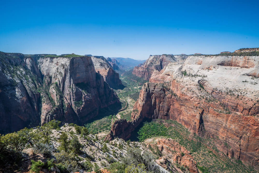 Observation Point vs. Angel's Landing in Zion, Which is Better?