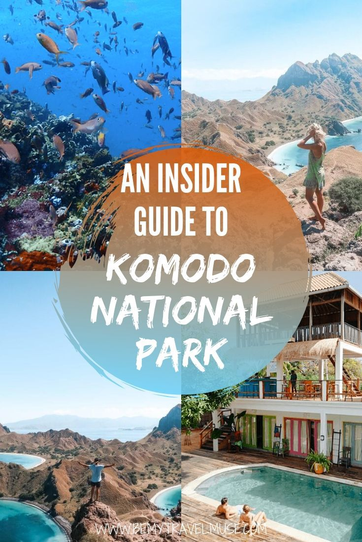 A complete guide to visiting the beautiful Komodo National Park in Flores, Indonesia #KomodoNationalPark #Indonesia