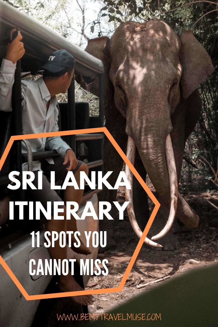A perfect Sri Lanka itinerary with 11 spots you cannot miss. Use this itinerary to plan your way through Sigiriya, Ella, Adam's Peak, Arugam Bay and some other off the beaten path places in the country where you will have gorgeous beaches all to yourself! Tips on getting to each spot, accommodation and best things to do in each area included. Click to read now! #SriLanka