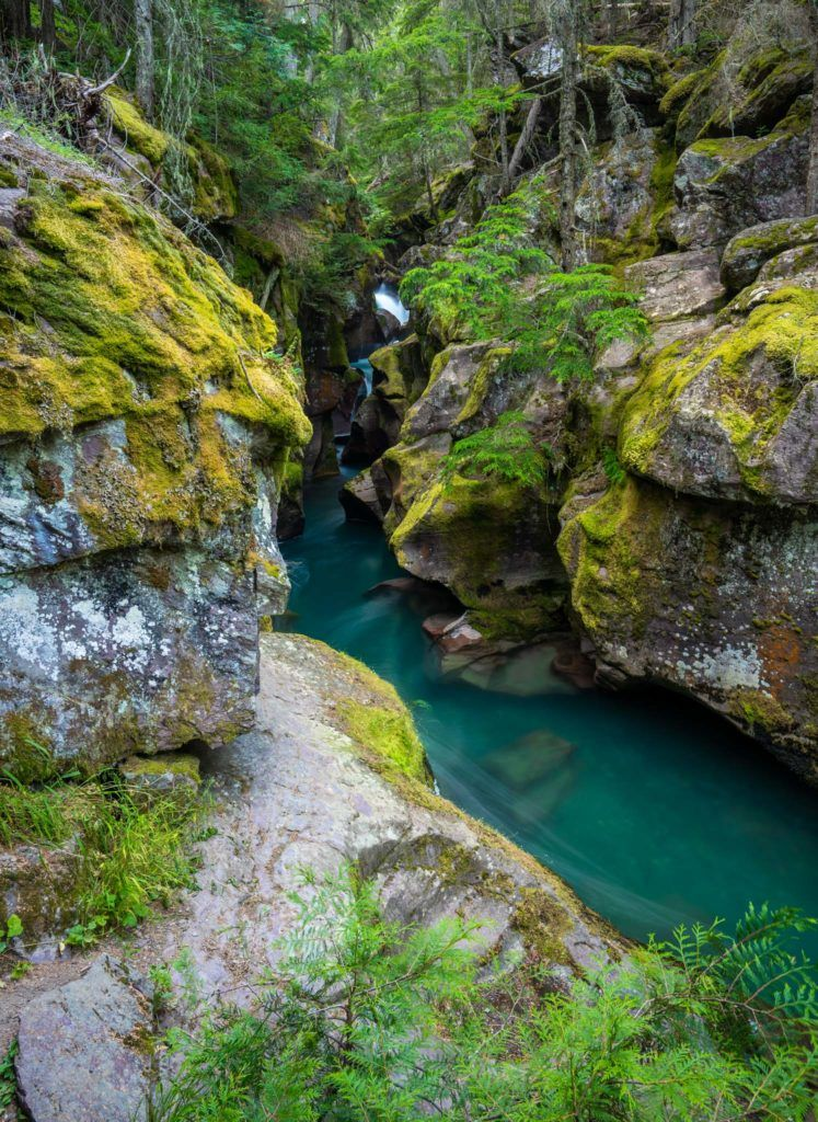 glacier national park things to do avalanche gorge