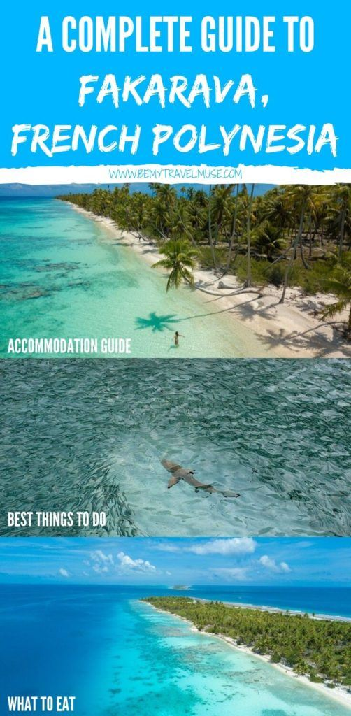 Here's a complete travel guide to Fakarava, French Polynesia. Find out how to get to the island, what are the best things to do, where should you stay, what food to eat, and where the most beautiful beaches are! #FrenchPolynesia #Fakarava