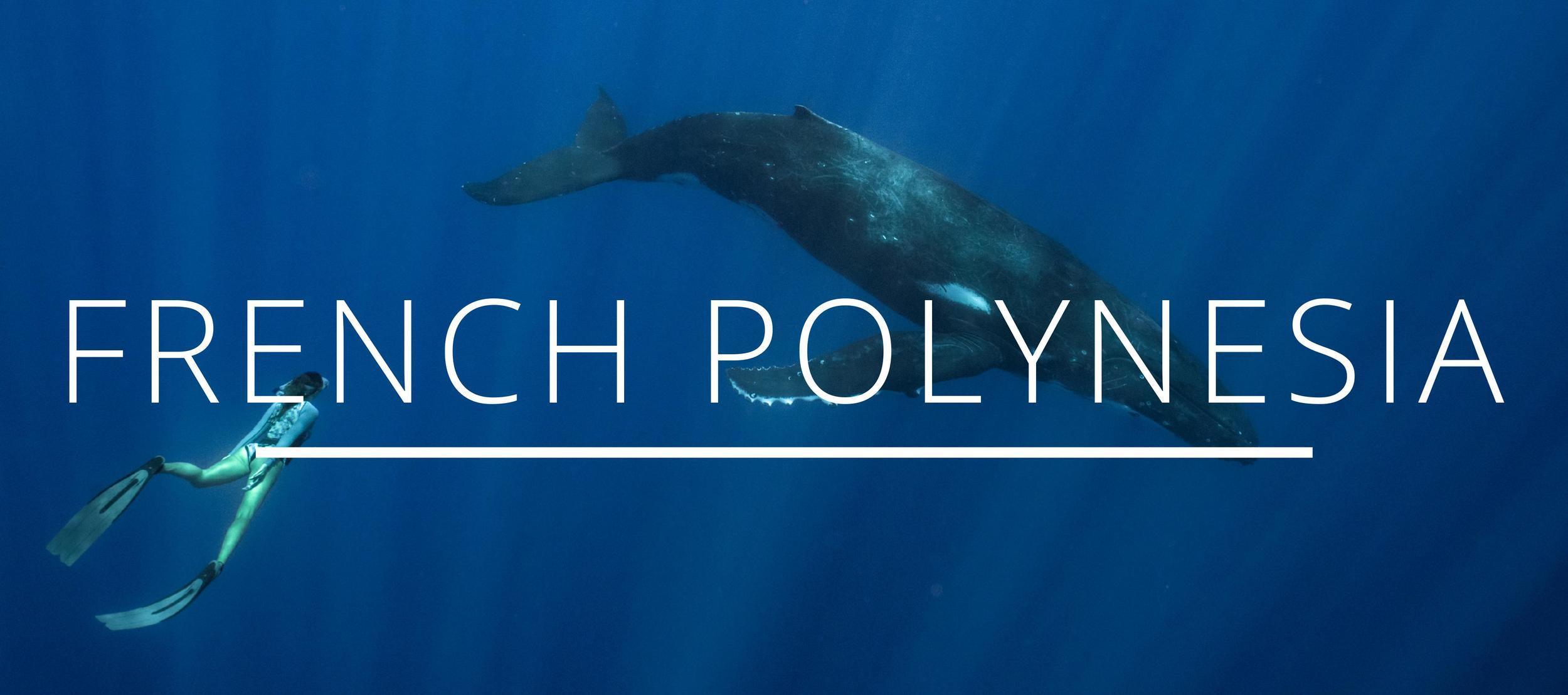 french polynesia guide