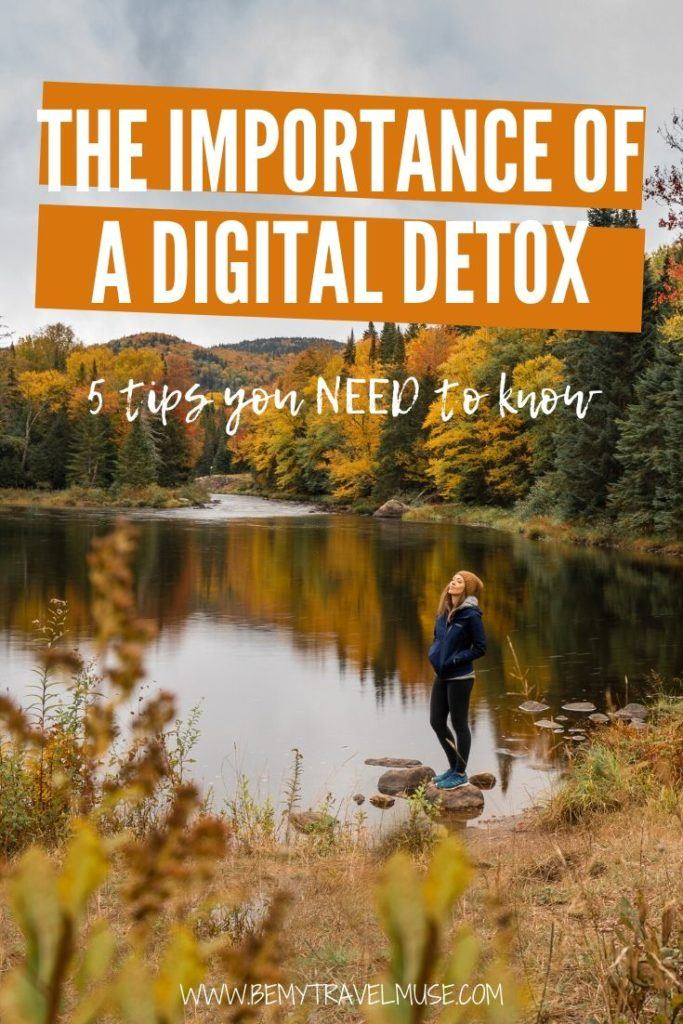 The importance of a digital detox cannot be overlooked, especially if you spend a lot of time on social media or the Internet in general. Here are 5 things you need to know about digital detoxing. #DigitalDetox
