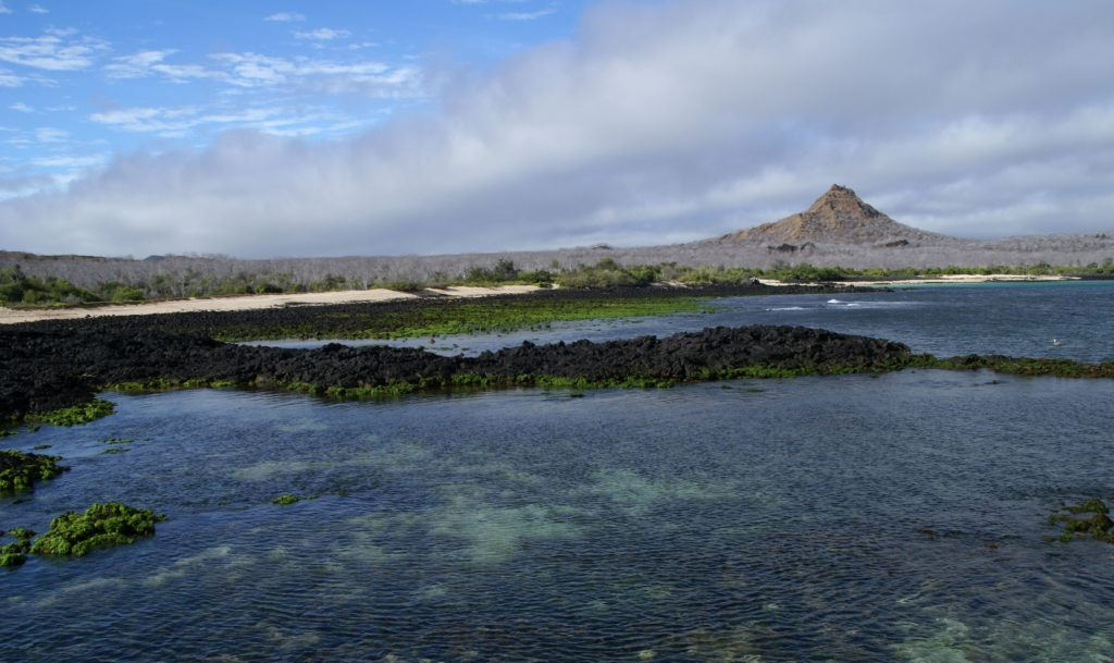 The 15 Best Things to Do on the Galapagos' Santa Cruz Island