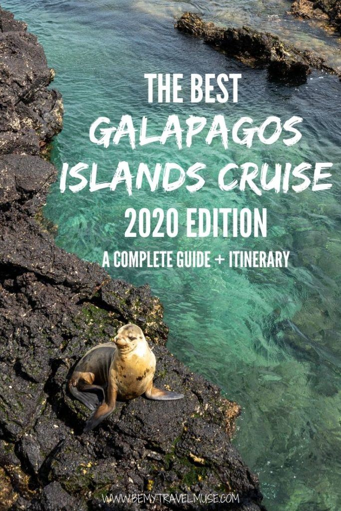 An awesome guide to the best Galapagos islands cruise in 2020, with everything you need to know about booking the right boat, and a complete itinerary
