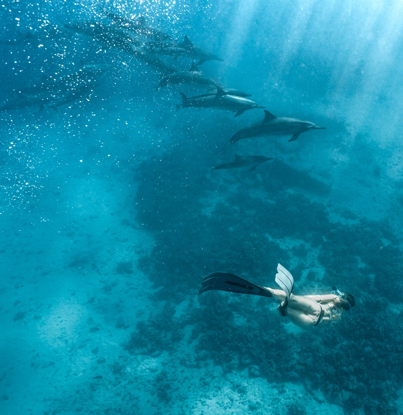 Home.fit big-island-hawaii-things-to-do-16 24 Amazing Things to do on Oahu