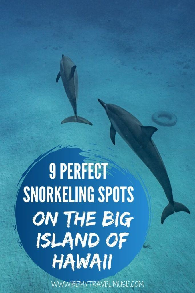 Here are 9 perfect snorkeling spots on the Big Island of Hawaii to consider when planning a trip. See dolphins, turtles, manta rays and the most colorful fishes with the help of this amazing guide!