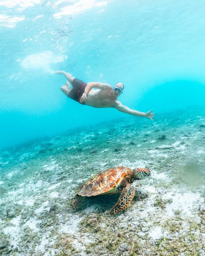 10 top things to do in Samoa - Tom swimming with turtles