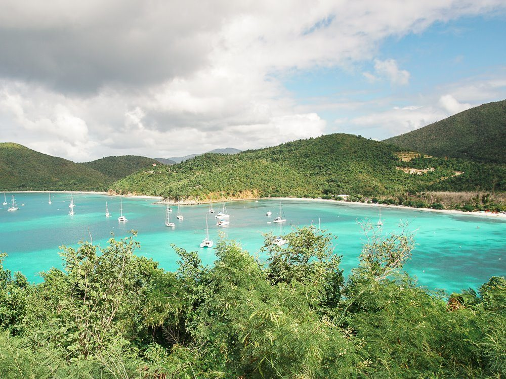 lush forest surrounding boat-filled maho bay in virgin islands national park
