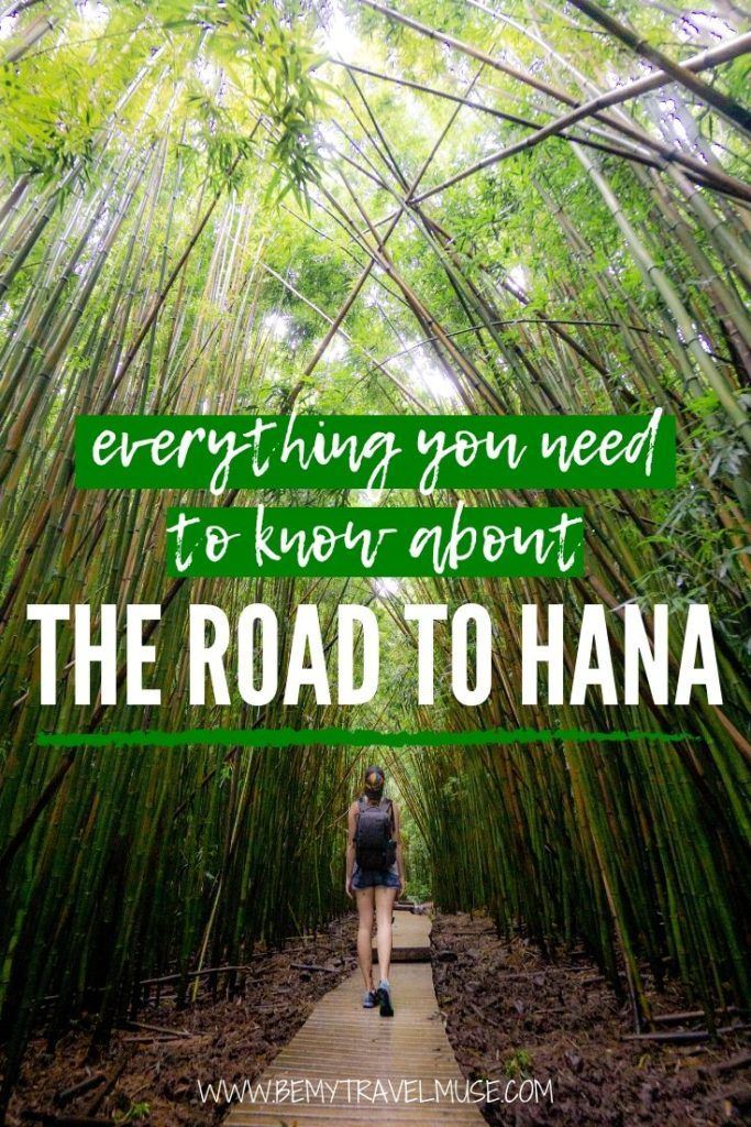 A complete guide to the Road to Hana, a 2020 edition!You will fine the Road to Hana map, accommodation guide, car rental tips, a complete itinerary as well as safety tips to help you plan the most amazing road trip in Hawaii! #RoadtoHana #Hawaii