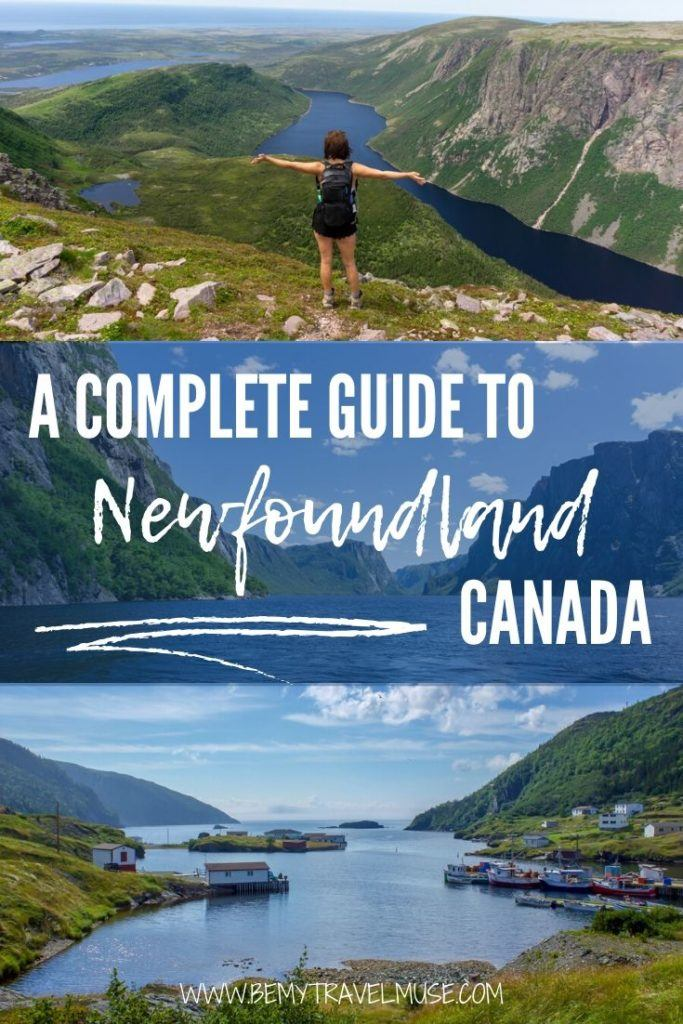 Looking for a destination that's full of unspoiled wilderness, breathtaking hiking trails, whale watching, icebergs, and colorful communities? Click for a local's guide to Newfoundland, Canada, with the best things to do, tips on getting around, and other insider tips that will help you plan a wonderful trip to Newfoundland. #Newfoundland #Canada