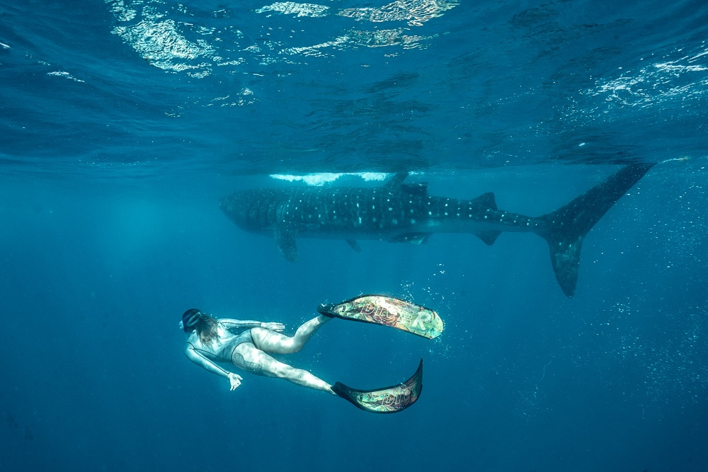 26 Unexpected Things to Do in the Riviera Maya, México
