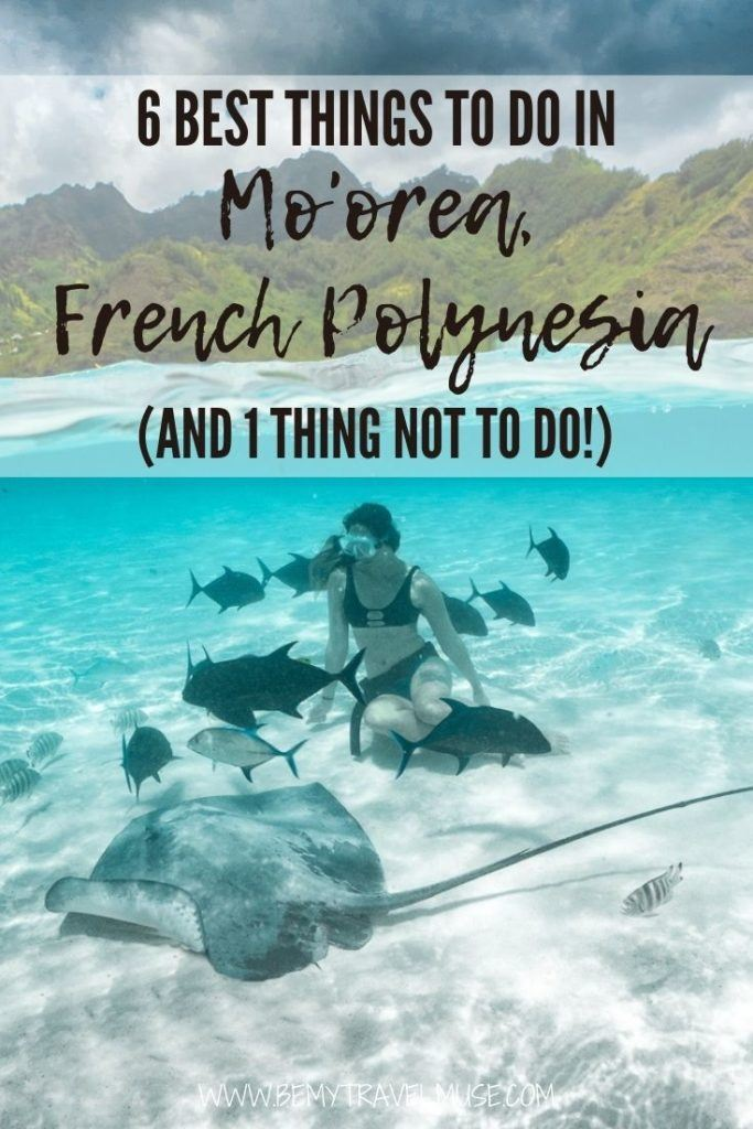 planning what to do while you are in Mo'orea, French Polynesia? Here are 6 unique things to do, including swimming with rays, reef sharks and humpback whales, plus other local recommendations and the one thing you should NOT do! #Moorea #FrenchPolynesia