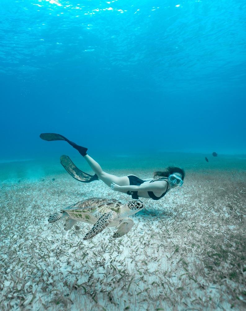 aruba things to do snorkel tres trapi sea turtles