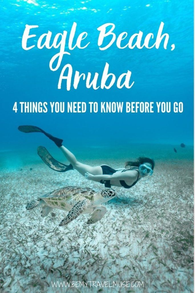 Eagle Beach, Aruba: 4 things you need to know before you go. Learn how to get to Eagle Beach, get accommodation and restaurant recommendation, and find out if Eagle Beach is truly worthy of visiting. #EagleBeach #Aruba