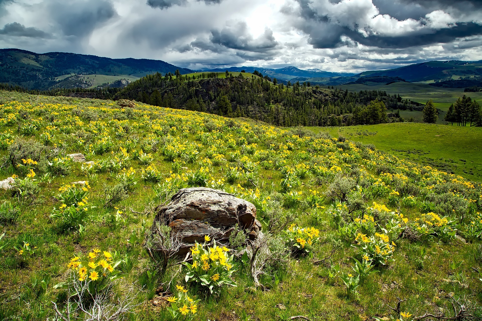 Home.fit best-parks-to-visit-in-spring-2 The 17 Best National Parks to Visit in the Spring