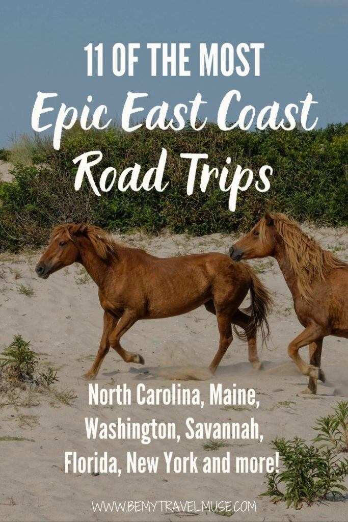 Home.fit 2-7-683x1024 11 of the Most Epic East Coast Road Trips