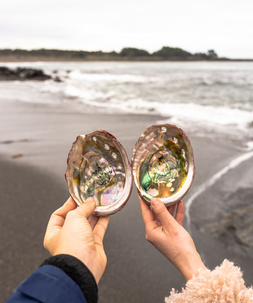 Home.fit mendocino-fort-bragg-13 The BEST Things to Do in Fort Bragg, California