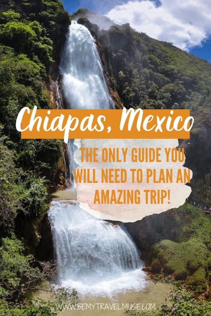 Home.fit 1-1-683x1024 Your Ultimate Guide to Chiapas, Mexico