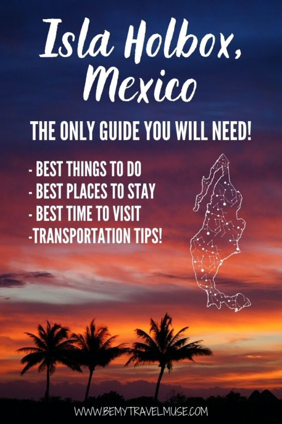 The Complete Guide to Isla Holbox, Mexico