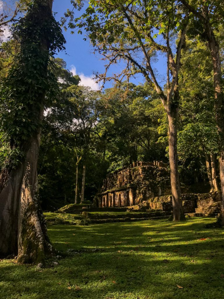 Home.fit guide-to-chiapas-7-768x1024 Your Ultimate Guide to Chiapas, Mexico