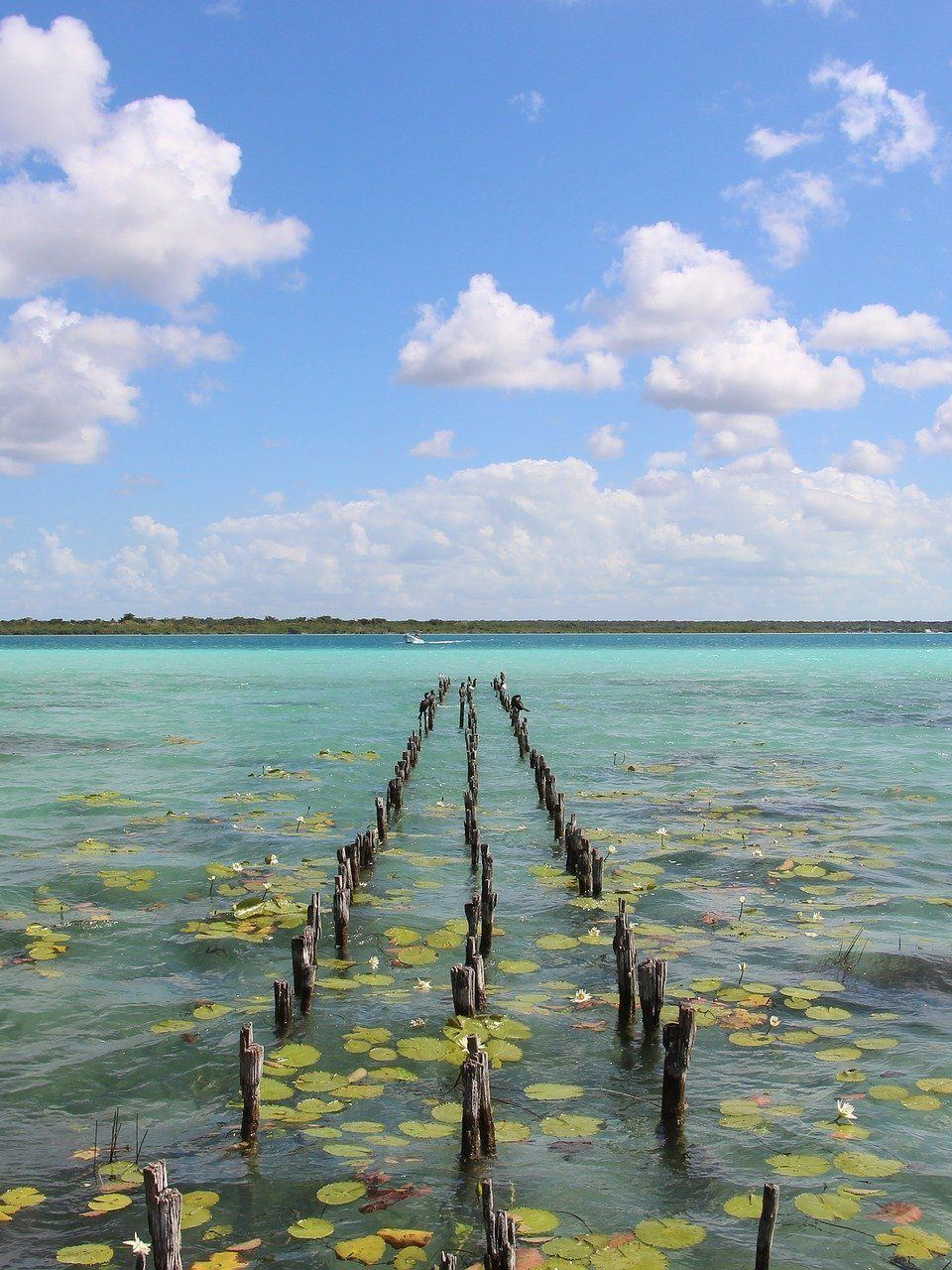 Home.fit reasons-to-visit-bacalar-edited 12 Reasons to Visit Bacalar