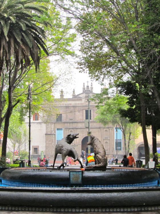 33 Awesome Things to Do in Mexico City