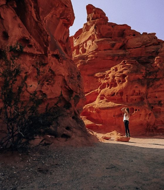 The Perfect 24 Hours in Valley of Fire State Park