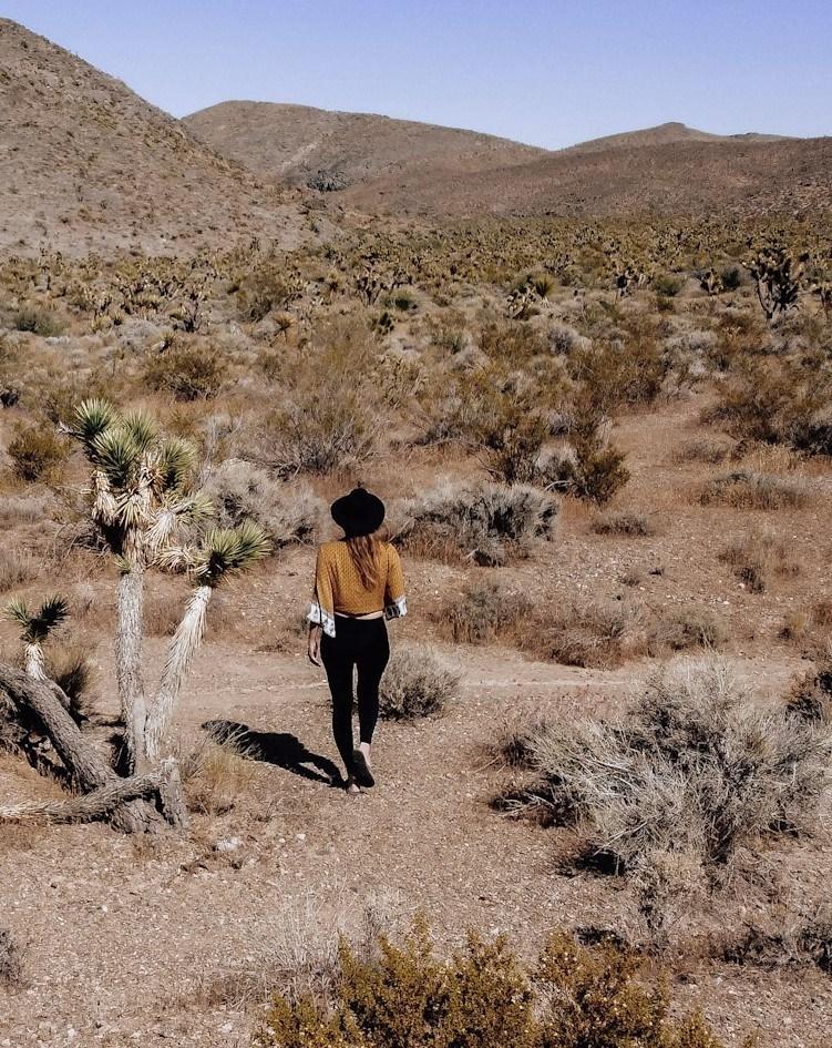 Monica walking the Mojave desert in California.