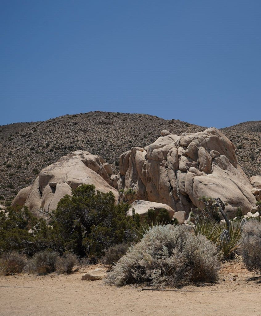 The large rocks in Joshua Tree National Park.